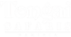 Tongai Safaris